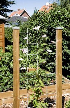 Garden Planning, Garden Inspiration, Curb Appeal, Fence, Backyard, Outdoor Structures, Landscape, Green, Gardening