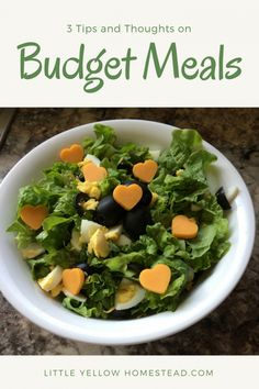 Budget meals – It is the little things - Little Yellow Homestead Weekly Budget, Budget Meals, Managing Money, Frugal Living, Personal Finance, Homesteading, Saving Money, Budgeting, How To Make Money