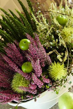 Heathers / Calluna vulgaris, green apples, autumn decorating idea for tables.