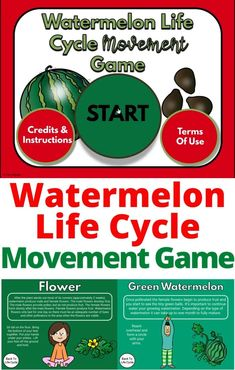 These digital movement games are so much fun! Are you learning about life cycles? These movement games will incorporate exercise into learning about the life cylces of butterflies, mosquitos, and watermelon! Great to use as a brain break, indoor recess, movement at home, Physica Therapy, Occupational Therapy and more! These can be used for teletherapy or in person! Great for preschool, kindergarten and more!