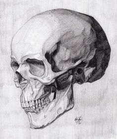 Fantastic Pics skull drawing tutorial Concepts Wish to discover ways to draw? You're in the proper place. Whether you're a beginner searching f Anatomy Sketches, Anatomy Drawing, Anatomy Art, Drawing Sketches, Art Drawings, Drawing Tips, Drawing Drawing, Drawing Ideas, Drawings Of Skulls