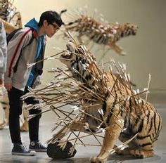 man looks at a life-size tiger which is one of the 35 works by Cai ...
