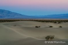 Morning twilight at Mesquite Dunes, Death Valley National Park, California, USA.