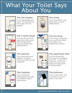 What your toilet apparently says about you! Where do you fit in?