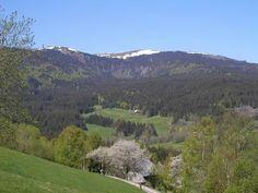 Mit 1493 Metern ist der im Südschwarzwald liegende Feldberg der höchste Berg im Schwarzwalds. Die erste urkundliche Erwähnung des Feldbergs geht in das Jahr 983 n. Chr. zurück. Die Gemeinde gleichen Namens entstand erst 1939 durch die Vereinigung der vereinzelten Weidegebiete mit der Gemeinde Bärental. Später kamen Falkau und Altglashütten hinzu.