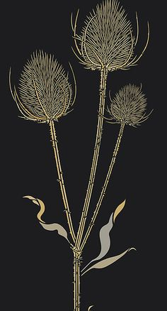 Large Teasels Stencil Wild Thistle Teasel Stencils