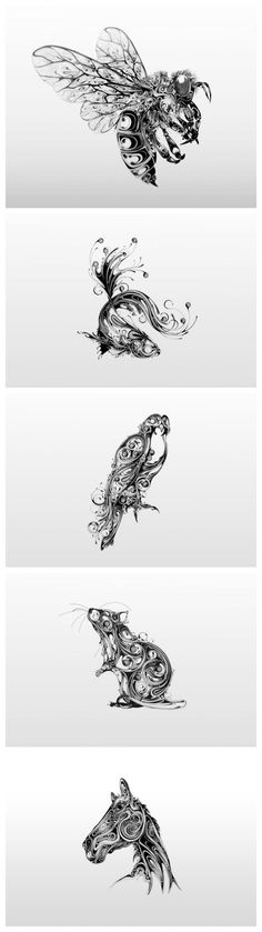 Swirling Pen and Ink Wildlife Illustrations by Si Scott