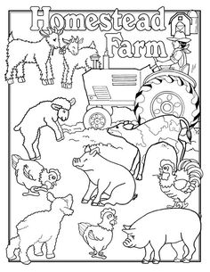 animal coloring pages for adults he fills my cup charlottes web free printable coloring farm coloring pagescoloring sheets - Farm Animal Coloring Pages Sheets