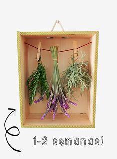 Secadora de hierbas aromáticas. #DIY #Huerto