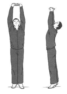 DOS MANOS SUJETAN EL CIELO De pie se entrelazan los dedos de las manos enfrente del abdomen y se suben, mientras se inspira, empujando hacia el cielo, estando de puntillas, se expira al regresar a la posición original