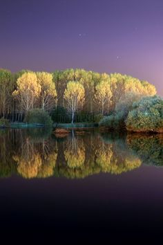 Bosque de Salburua Vitoria  Spain