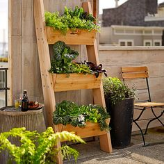 "Farmer D 3-Tier Vertical Wall Garden $230. Planters with drainage holes are crafted of 2""-thick boards of Unfinished Western Red Cedar. 27"" x 66"" high overall. Leans at 20"" distance from wall surface. Planting space of each box is 21"" x 8 1/4"" x 6 1/4""."