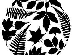 UBC Botanical Garden Logo