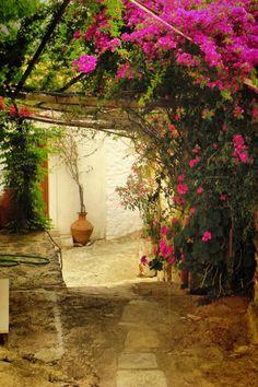 Flower Path in Skopelos, Greece
