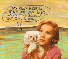 """stoicmike: I was consoling my friend who had to put his old Golden down and Bob said, """"Don't feel sorry for Marty. He had a better life than I did."""" I thought about that and decided it was true. Lots of dogs have better lives than their owners. - Michael Lipsey"""