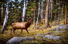 Deep Woods Monarch-Elk by Jim Killen : Wild Wings Wildlife Paintings, Wildlife Art, Art Paintings, Antler Art, Ceiling Art, Deer Art, Sports Art, Cool Landscapes, Watercolor Landscape