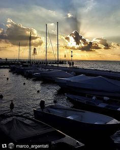 "#Repost @marco_argentati  ""Chi sa ascoltare ha già detto molto di se..."" . . . . . . . Photo taken and edited with Samsung S6 #igersperugia #igersitalia #browsingitaly #igersumbria #igersspoletooutofvalley #cityoftalent #tiportalontano #italiainunoscatto #instagram #communityfirst #il365 #comeandsee #ibloggermespiccianocasa #discoveritaly #lago #lake #trasimeno #trasimenolake #perugia #umbria #umbriatourism #umbrialovers"