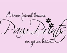 quotes about pets - Google Search