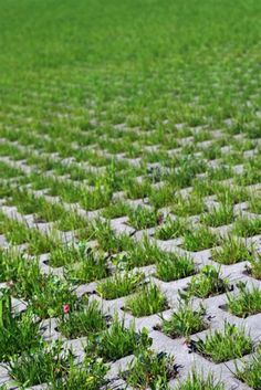 Amazing 45 Most Popular Backyard Paver Patio Design Ideas 2019 48 - DecoRecent Grass Pavers, Paver Walkway, Brick Pavers, Driveway Pavers, Paving Stones, Concrete Patio, Paver Designs, Types Of Grass, Outdoor Patio Designs