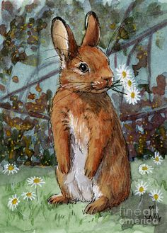 Google Image Result for http://images.fineartamerica.com/images-medium-large/lovely-rabbits--daisies-for-you-svetlana-ledneva-schukina.jpg
