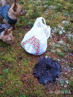 Sarcodon squamosus this autumn Männynsuomuorakasvärjäys tänä syksynä Picnic Blanket, Outdoor Blanket, How To Dye Fabric, Autumn, Knitting, Crochet, Mushroom, Fall Season, Tricot