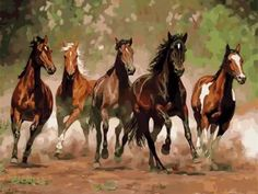 RIHE Horses Pranced And Whinnied Diy Painting By Numbers Animals Oil Painting On Canvas Cuadros Decoracion Acrylic Wall Art Oil Painting Pictures, Pictures To Paint, Oil Painting On Canvas, Diy Painting, Horse Paintings On Canvas, Wall Pictures, Acrylic Paintings, Brown And White Horse, Paint Paint