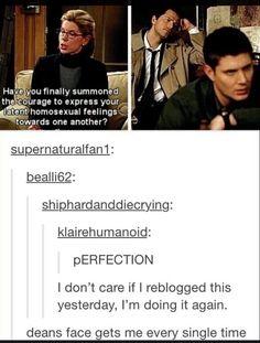 PERFECTION XD