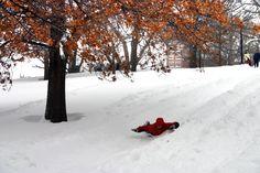 From Cambridge to South Boston to Roxbury, here are 21 top parks for sledding | Boston Magazine