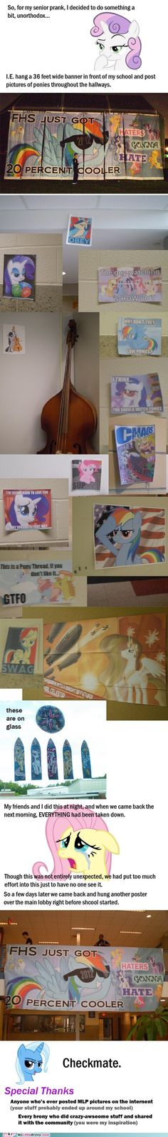 my little pony, friendship is magic, brony - Pranking Done Right<------ omg what school is this my towns high school is FHS but my brother would have told me is somthing like this happened Mlp My Little Pony, My Little Pony Friendship, Mlp Memes, Senior Pranks, Mlp Fan Art, Mlp Comics, Little Poney, Freaking Awesome, April Fools