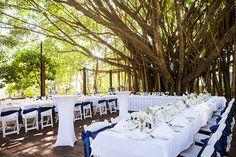 Real Wedding: Caitlin and Matthew / Alison Jones Photography, Cairns