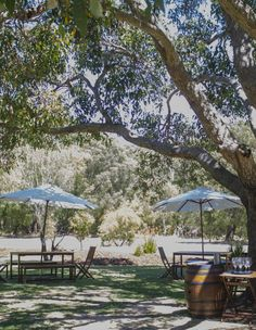 Arimia Estate Winery, Yallingup - Restaurant Reviews, Phone Number & Photos - TripAdvisor