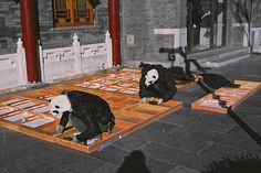 Things You'll Only See In China...Pandas doing manual labor: