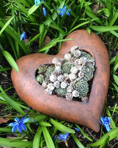 Pflanzgefäß in Herzform (Keramik)