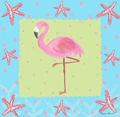 ZAM_COASTAL_FLAMINGO01.jpg