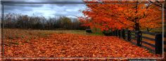 Autumn Timeline Cover, Autumn FB Cover, Fall Timeline Cover, Autumn FB Banners  Read more: http://www.851facebook.com/fall3.php#ixzz2ix3hqQMo Follow us: @851facebook.com on Twitter | 851covers on Facebook See it at http://www.851facebook.com