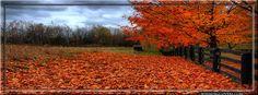Autumn Timeline Cover, Autumn FB Cover, Fall Timeline Cover, Autumn FB Banners Read more: http://www.851facebook.com/fall3.php#ixzz2ix3hqQMo Follow us: @851facebook.com on Twitter | 851covers on Facebook See it at http://www.851facebook.com