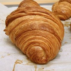 Croissant recipe from Thomas Keller's Bouchon Bakery French Croissant, Butter Croissant, Croissant Dough, Thomas Keller, Crossant Recipes, Homemade Croissants, Homemade Breads, Sicilian Recipes, Gastronomia