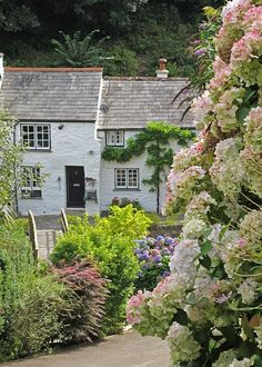 Cottages in Boscastle, Cornwall, England, UK  moment love