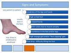 A high arched foot is a classic finding in Charcot-Marie-Tooth disease. My post explains...