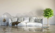 Vital Restoration offers property damage restoration services including fire, water, mold,cleanupand emergency disaster recovery. Residential & Commercial.