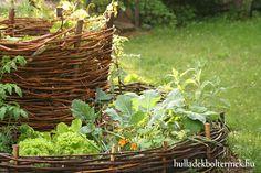 komposztkas, komposztálás, fenntartható, spórolás, zöld hulladék
