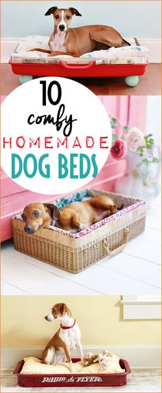 DIY Dog Beds You'll