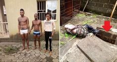 Samuel Cyprial's Blog: A Lady and two Men killed a delivery man because o...