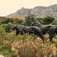 ..........#dylanlewissculpture #sculpturegarden #lion Sculpture Garden, Lion, Instagram, Leo, Lions