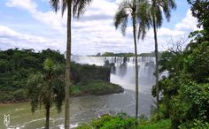 les chutes d'Iguazu, Argentine Iguazu Falls, Argentina www.mamaisonsurledos.com