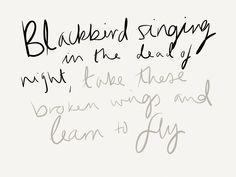 Blackbird- The Beatles