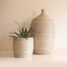 A place to shop handmade products by artisans. Flower Pots, Flowers, Laundry Hamper, Green Cream, Handmade Shop, Storage Baskets, Design Crafts, Timeless Design, Hand Weaving