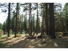 BOX CANYON RD, GOLDENDALE, WA 98620 ⋆ Klickitat County Land Sales, Real Estate Services