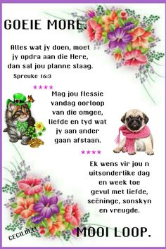 Morning Greetings Quotes, Good Morning Messages, Good Morning Wishes, Good Morning Quotes, Lekker Dag, Evening Greetings, Afrikaanse Quotes, Goeie Nag, Goeie More
