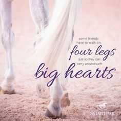 So True!! Love horses so much!